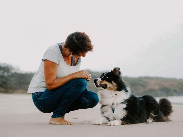 Dog trainer in Ballina